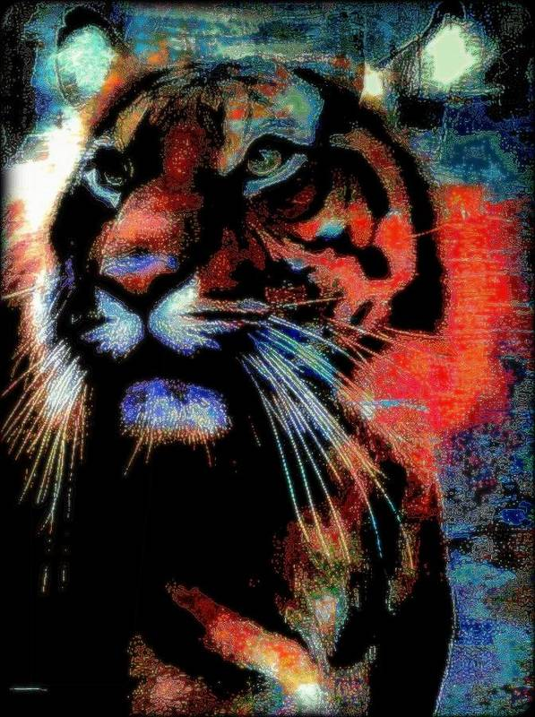 Big Cat Poster featuring the mixed media Tiger In The Mist by Wendie Busig-Kohn