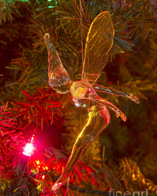 Tink Poster featuring the photograph Tinker Bell Christmas Tree Landing by James BO Insogna