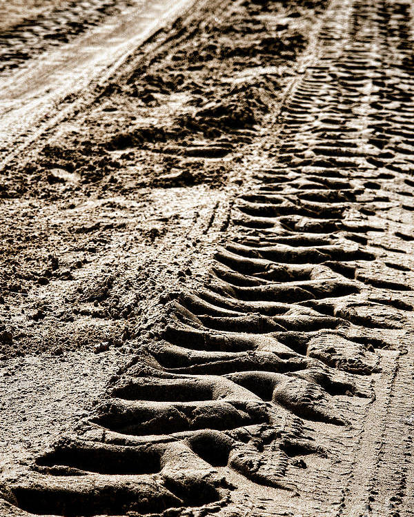 Tracks Poster featuring the photograph Tractor Tracks In Dry Mud by Olivier Le Queinec