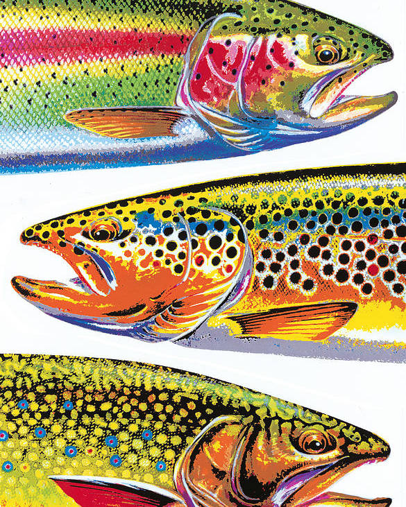 Jon Q Wright Poster featuring the painting Trout Abstraction by JQ Licensing