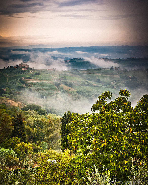 Countryside Poster featuring the photograph Tuscan View by Silvia Ganora