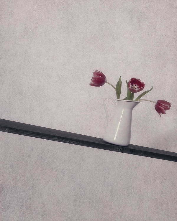Tulip Poster featuring the photograph Unbalanced Flowers by Joana Kruse