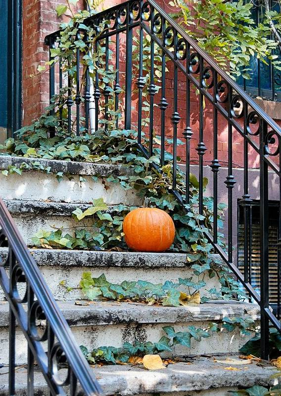 Jersey Poster featuring the photograph Urban Fall by JAMART Photography