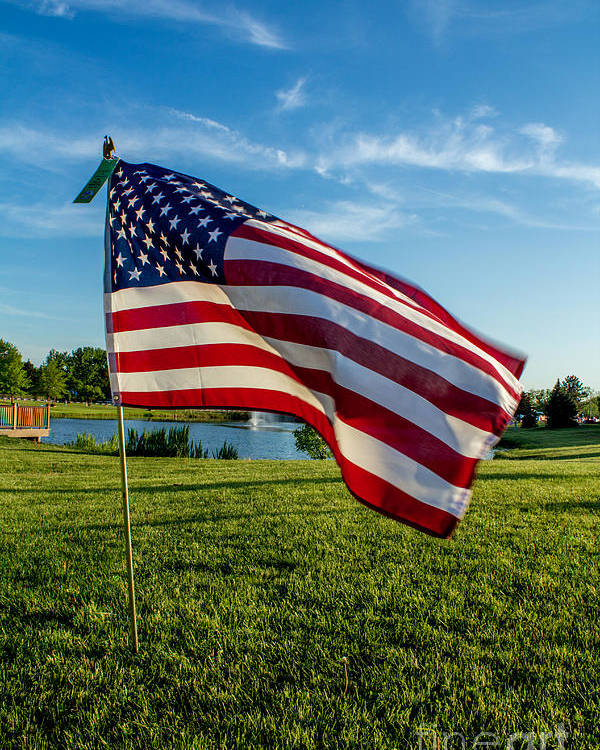 Usa Flag Poster featuring the photograph Usa Flag by Phyllis Bradd