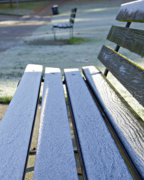 Bench Poster featuring the photograph Vancouver Frosty Morning by Marilyn Wilson