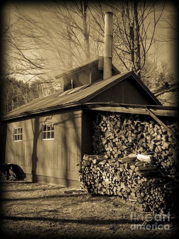 Maple Poster featuring the photograph Vermont Maple Sugar Shack Circa 1954 by Edward Fielding