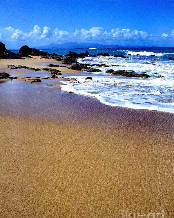 Vieques Beach Poster featuring the photograph Vieques Beach by Thomas R Fletcher