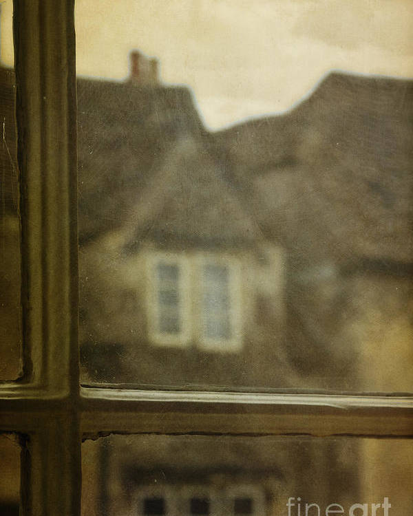 House Poster featuring the photograph View Out An Old Window by Margie Hurwich