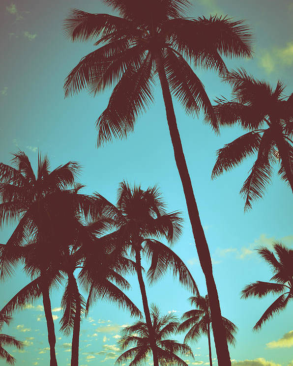Aged Poster featuring the photograph Vintage Tropical Palms by Mr Doomits