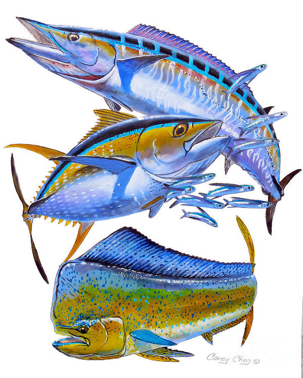 Wahoo Poster featuring the painting Wahoo Tuna Dolphin by Carey Chen