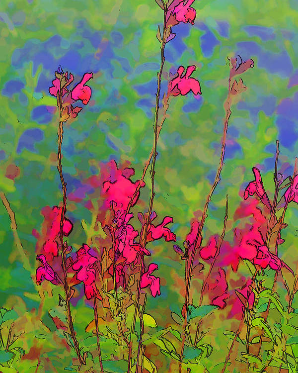 Nature Art Poster featuring the photograph Wake Up Smell The Flowers by Linda Phelps