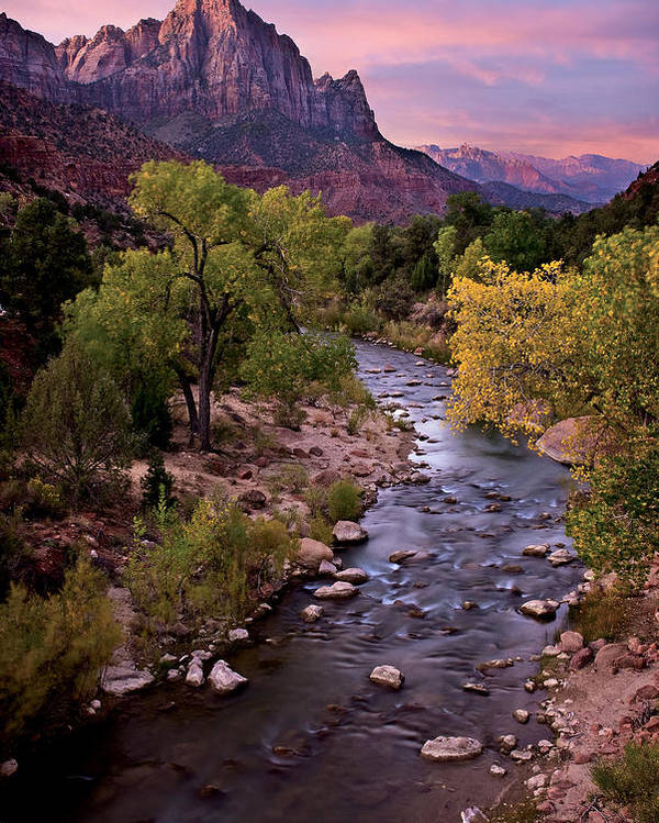 Zion Poster featuring the photograph Watchman Tower Zion Sunrise by Dave Dilli