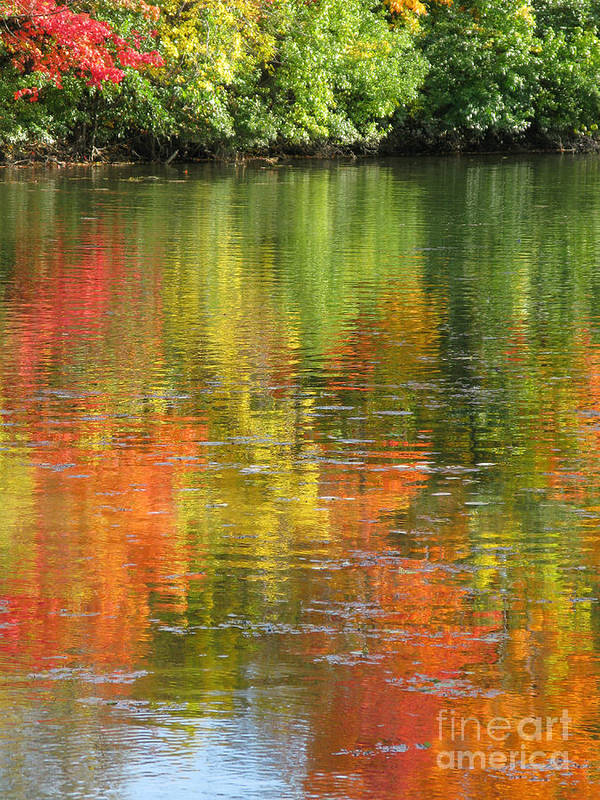 Autumn Poster featuring the photograph Water Colors by Ann Horn