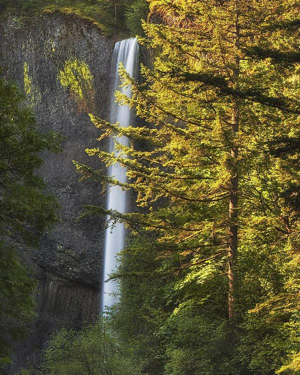 Waterfall Poster featuring the photograph Waterfall In The Light by Andrew Soundarajan