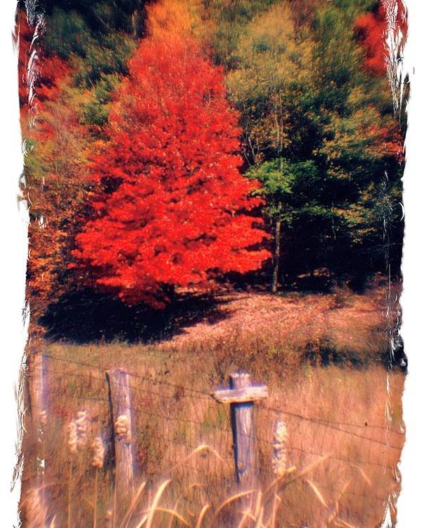 West Virginia Poster featuring the photograph West Virginia Country Roads - Autumn Colorfest No. 1 - Germany Valley Pendleton County Wv by Michael Mazaika