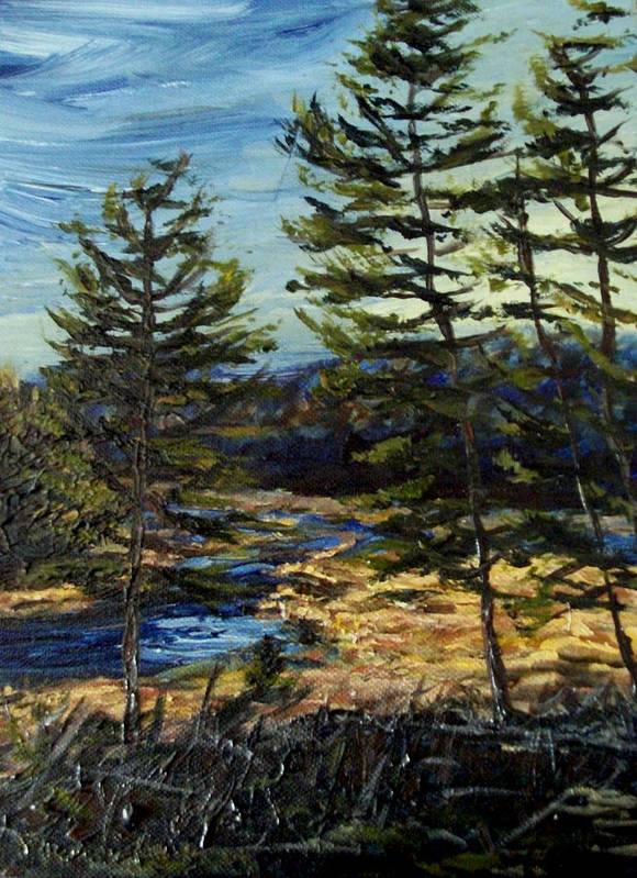 Adirondacks Poster featuring the painting Wetland Meadow by Denny Morreale
