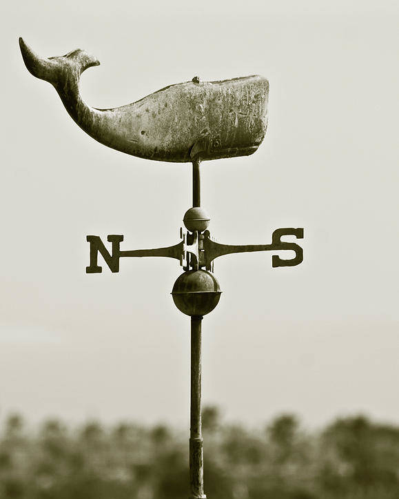 Whale Poster featuring the photograph Whale Weathervane In Sepia by Ben and Raisa Gertsberg