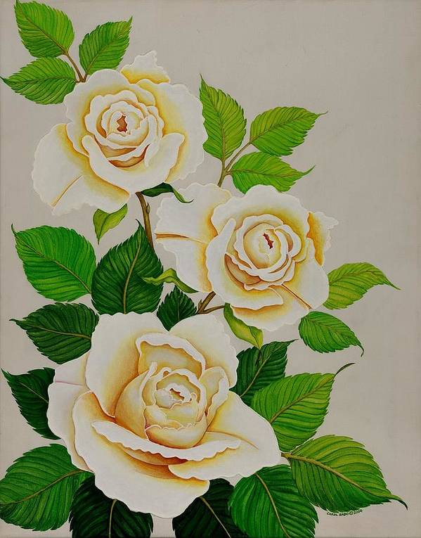 White Roses With Yellow Shading On A White Background. Poster featuring the painting White Roses - Vertical by Carol Sabo