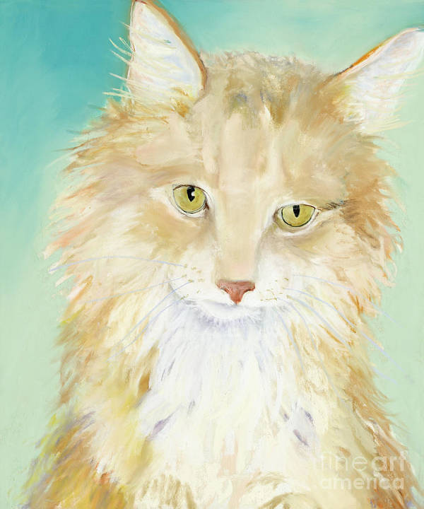 Main Coon Cat Poster featuring the painting Willard by Pat Saunders-White
