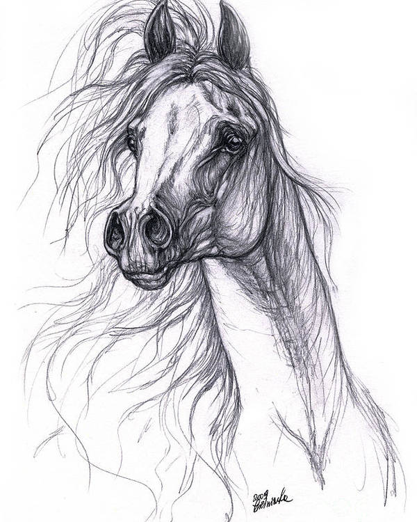 Horse Poster featuring the drawing Wind In The Mane 2 by Angel Tarantella