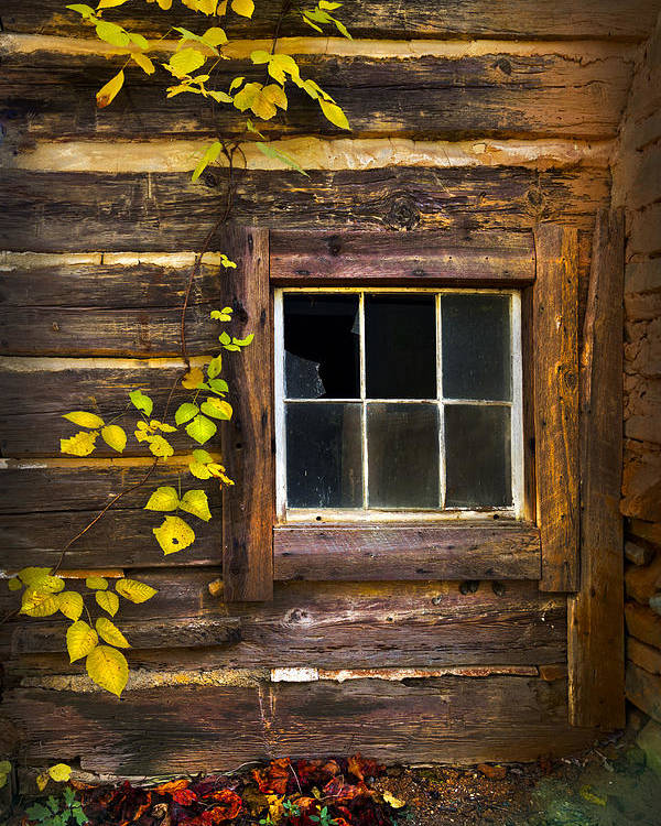 Appalachia Poster featuring the photograph Window To The Soul by Debra and Dave Vanderlaan