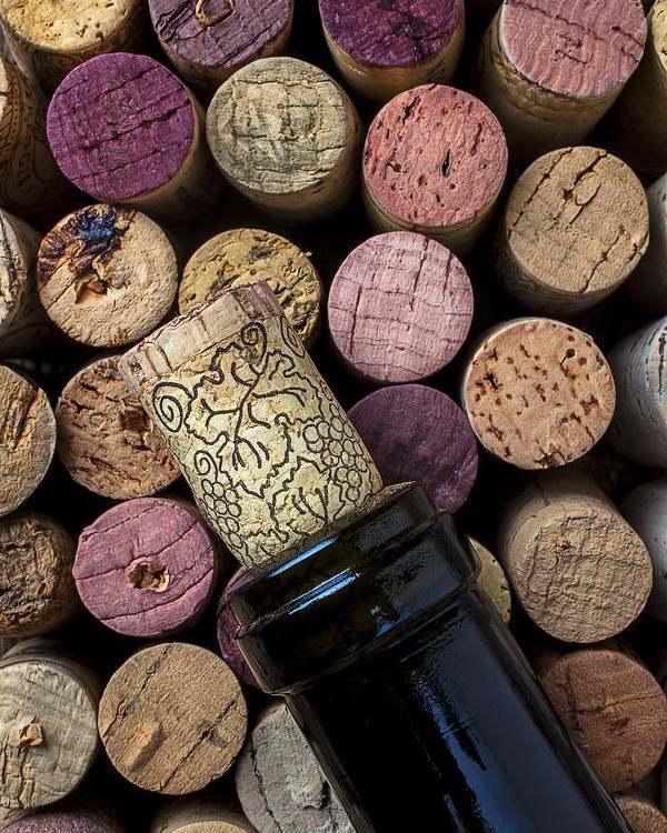 Corks Poster featuring the photograph Wine Bottle With Corks by Garry Gay