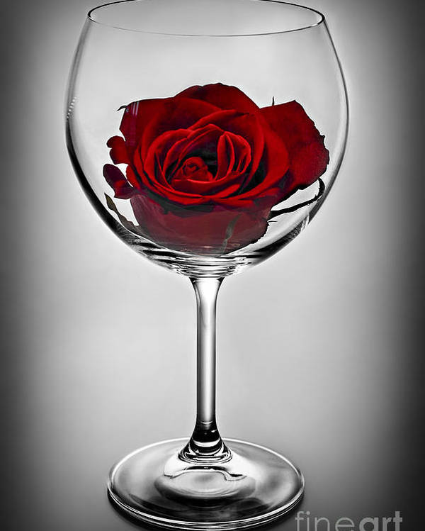 Glass Poster featuring the photograph Wine Glass With Rose by Elena Elisseeva