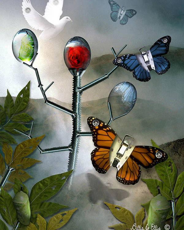 Butterflies Poster featuring the digital art Winged Metamorphose by Billie Jo Ellis