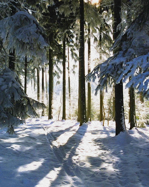 Sunny Poster featuring the photograph Winter Landscape by Aged Pixel