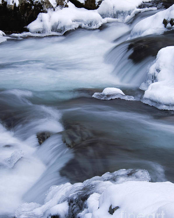 Little Poster featuring the photograph Winter On The Little Pigeon River 1 - D008788 by Daniel Dempster