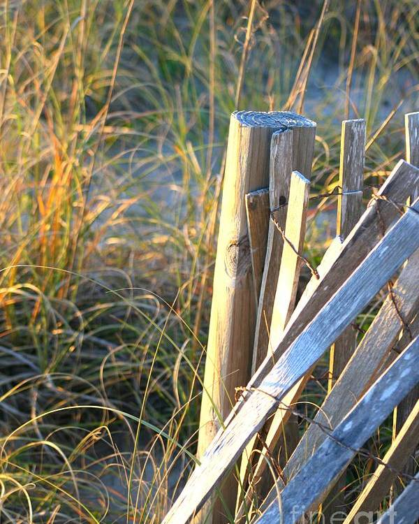 Post Poster featuring the photograph Wooden Post And Fence At The Beach by Nadine Rippelmeyer
