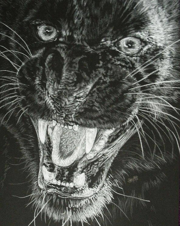 Leopard Poster featuring the drawing Wrath by Barbara Keith