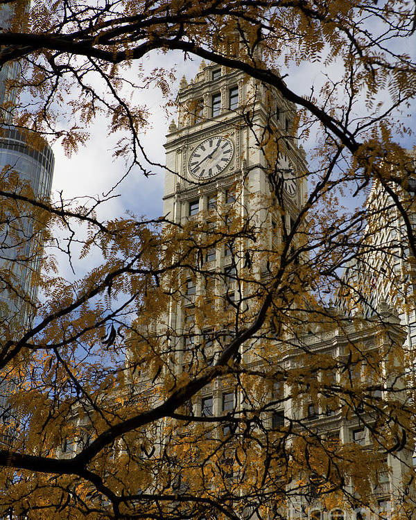Wrigley Poster featuring the photograph Wrigley Building In Autumn by Leslie Leda