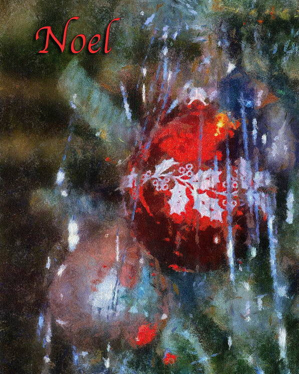 Christmas Poster featuring the photograph Xmas Ornament Noel Photo Art 02 by Thomas Woolworth
