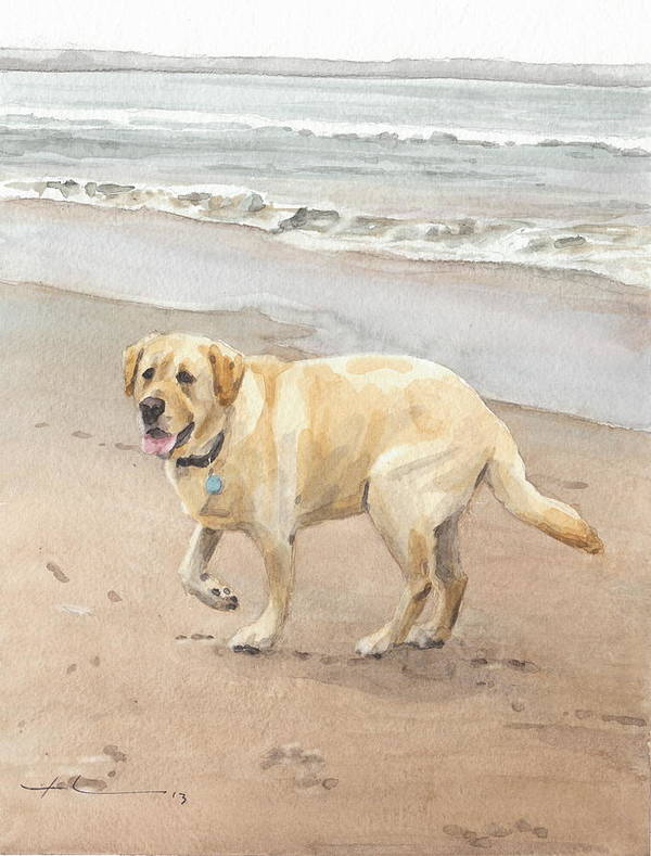 Www.miketheuer.com Yellow Lab On Beach Watercolor Portrait Poster featuring the drawing Yellow Lab On Beach Watercolor Portrait by Mike Theuer
