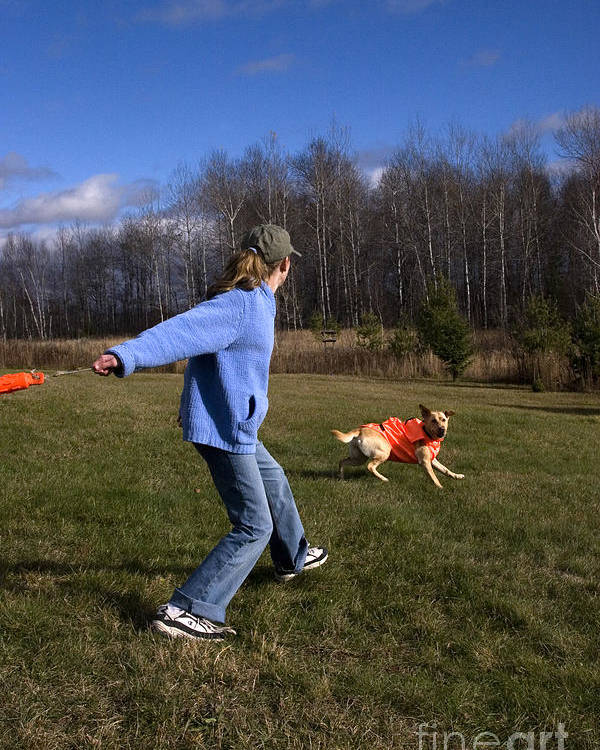 Throwing Poster featuring the photograph Yellow Labrador And Girl by Linda Freshwaters Arndt