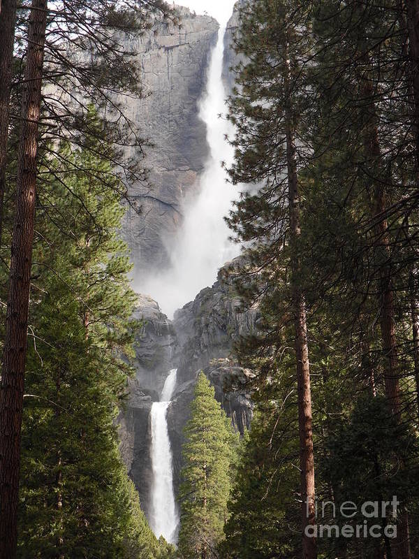 Landscape Poster featuring the photograph Yosemite Falls 2013 by Audrey Van Tassell