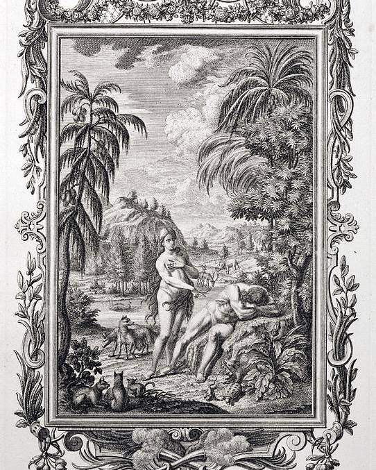 18th Century Poster featuring the photograph 1731 Scheuchzer Creation Adam & Eve by Paul D Stewart