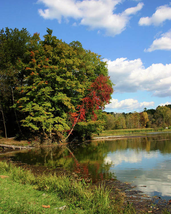 Lake Poster featuring the photograph A Touch Of Autumn by Kristin Elmquist