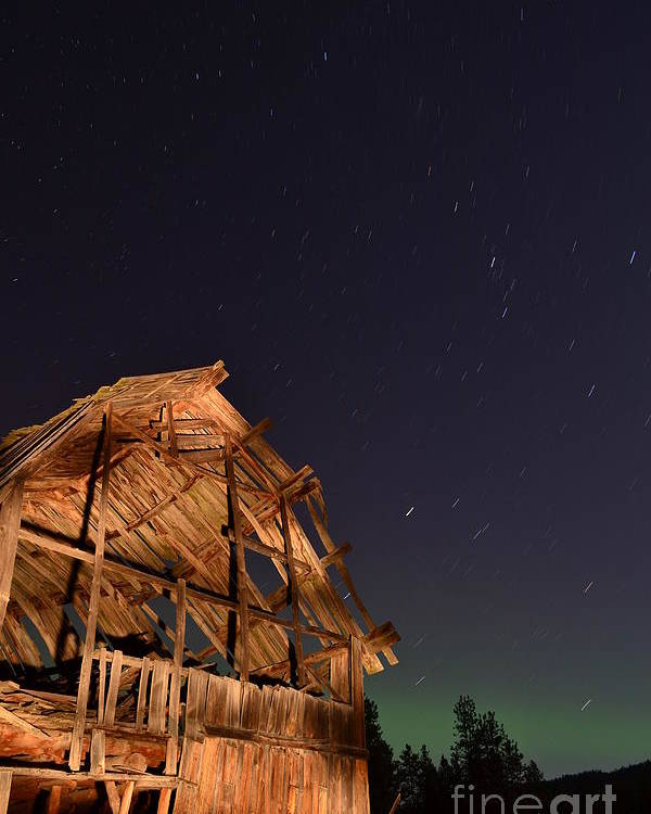 Northern Lights Poster featuring the photograph Aurora At The Ranch by Phil Dionne