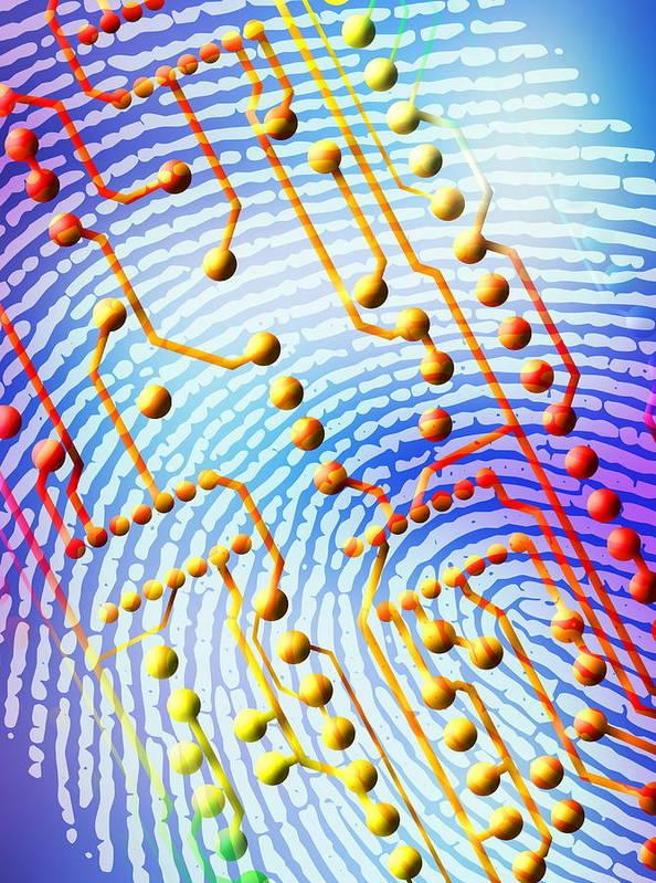 Equipment Poster featuring the photograph Biometric Fingerprint Scan by Pasieka