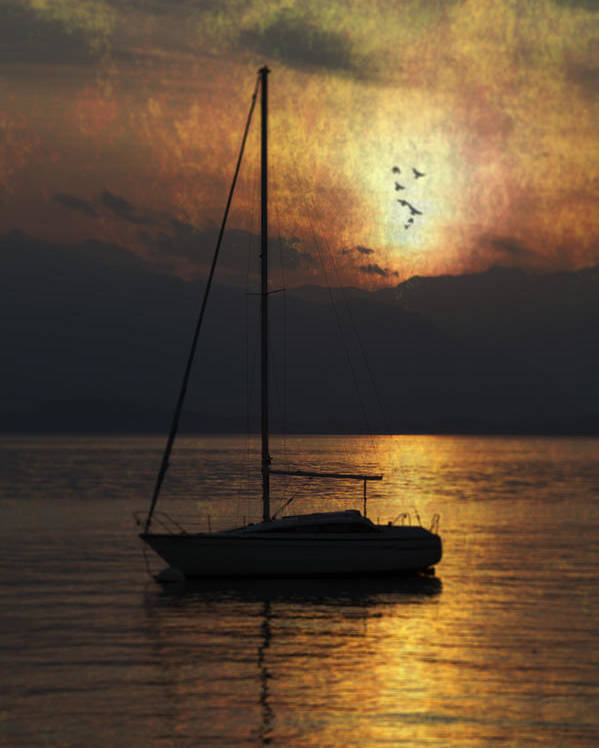 Boat Poster featuring the photograph Boat In Sunset by Joana Kruse