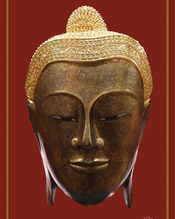 Buddha Poster featuring the photograph Buddha's Pleasure by Allan Rufus