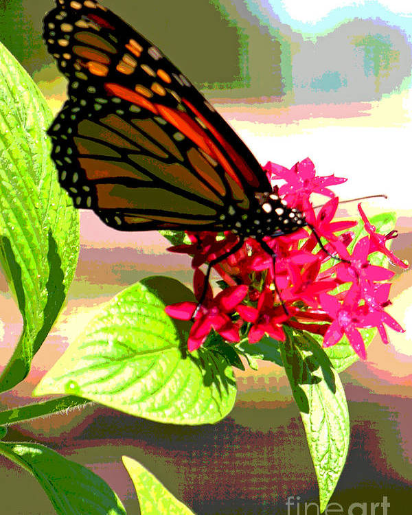 Butterfly Poster featuring the digital art Butterfly Flowers by Peggy Starks