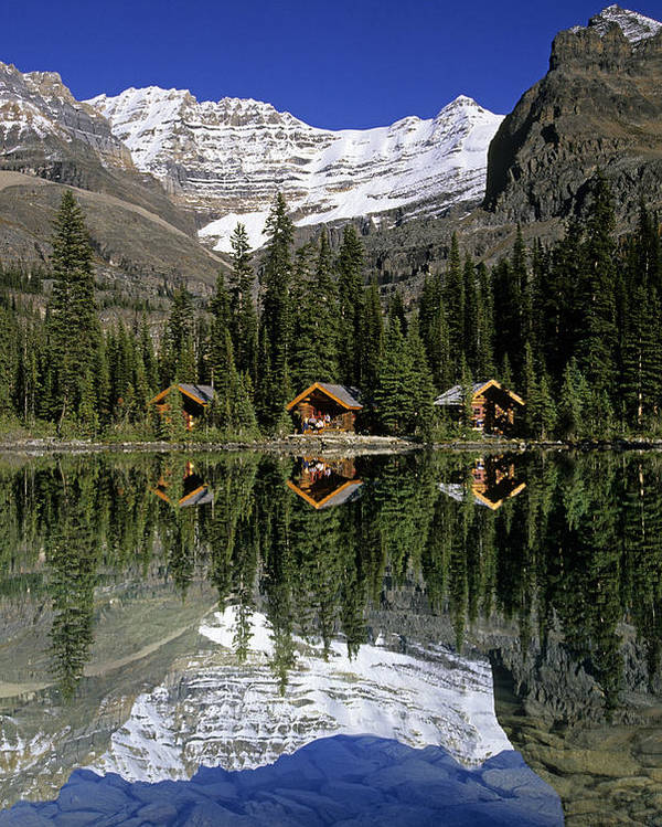 Cabin Poster featuring the photograph Cabins, Sargents Point, Lake Ohara by John Sylvester