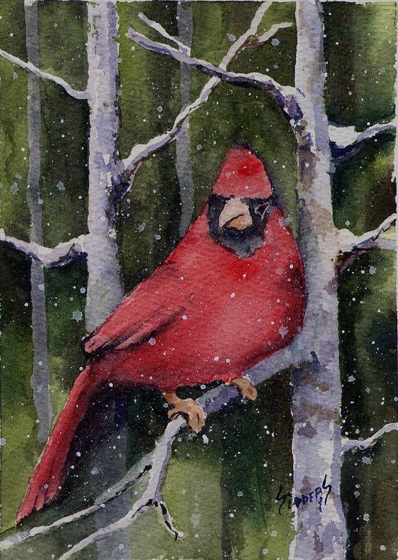 Cardinal Poster featuring the painting Cardinal by Sam Sidders