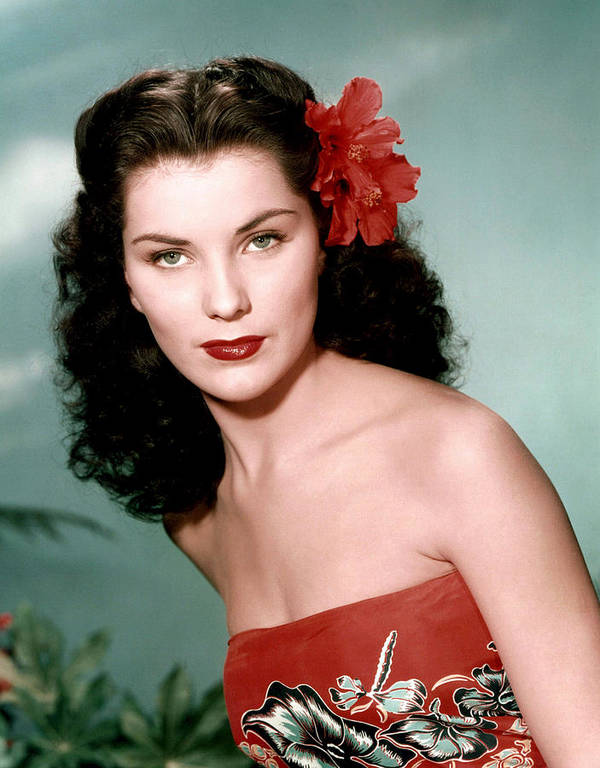1950s Portraits Poster featuring the photograph Debra Paget, Ca. 1950s by Everett