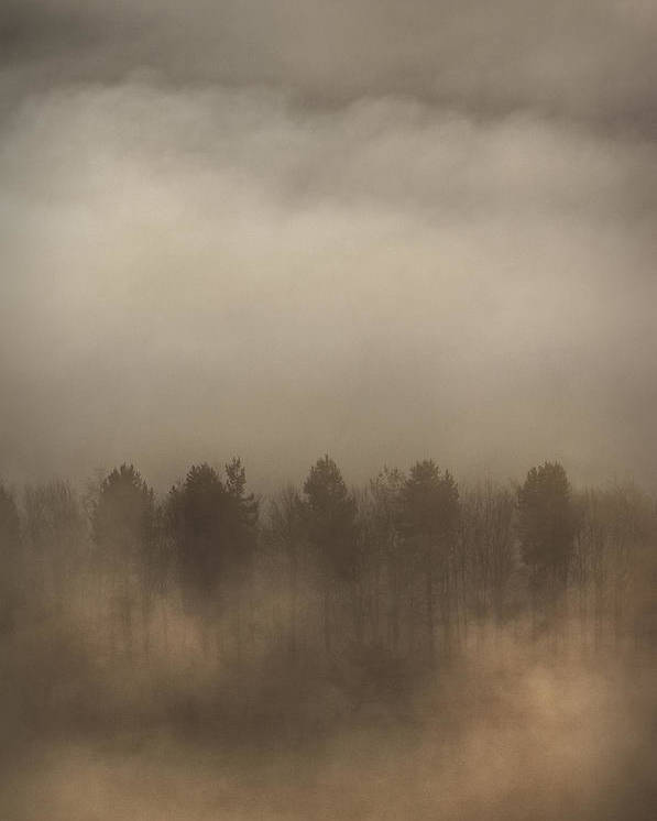 Fog Poster featuring the photograph Fog Wall by Andy Astbury