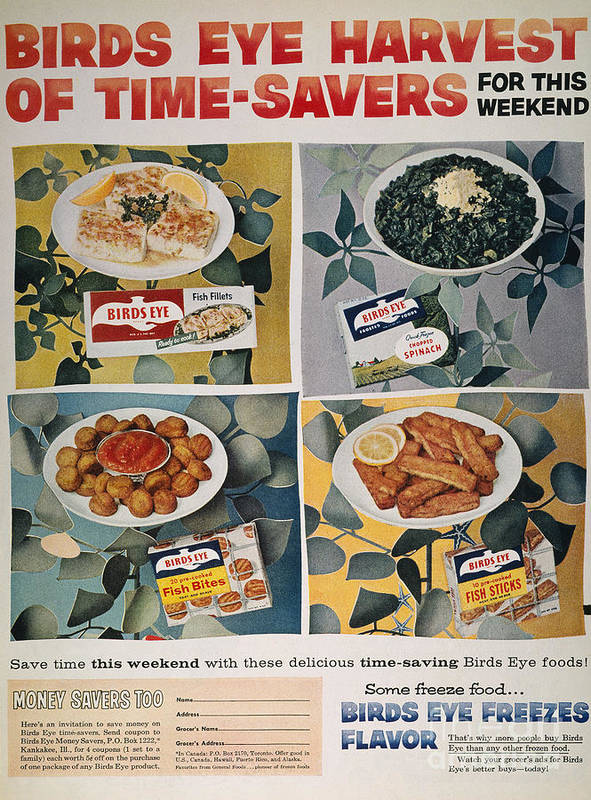 -domestic- Poster featuring the photograph Frozen Food Ad, 1957 by Granger