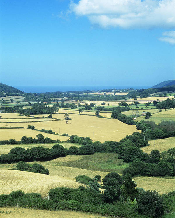 Field Poster featuring the photograph Mixed Farmland by David Aubrey